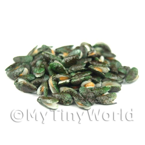 Miniature New Zealand Open Green Lipped Mussel