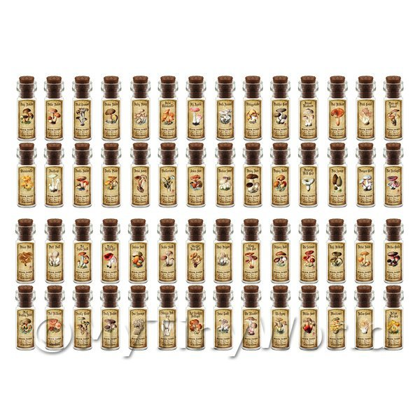 Dolls House Miniature  | Dolls House Apothecary Set of 56 Fungi / Toadstall Bottles And Colour Labels