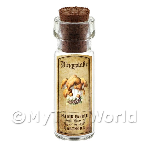 Dolls House Apothecary Ningyotake Fungi Bottle And Colour Label
