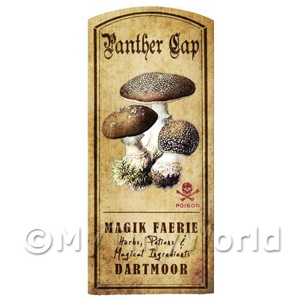 Dolls House Miniature Apothecary Panther Cap Fungi Colour Label