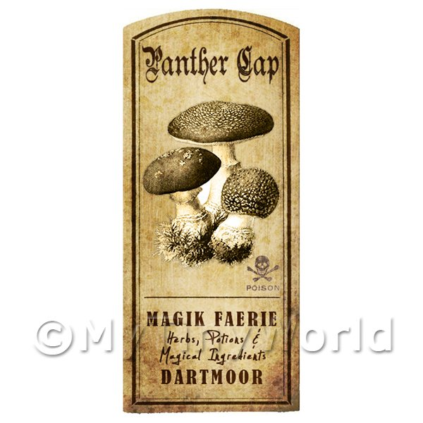 Dolls House Miniature Apothecary Panther Cap Fungi Label