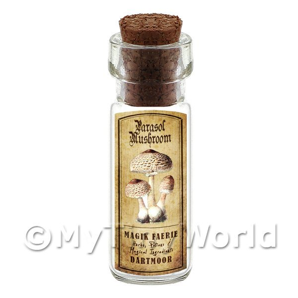 Dolls House Apothecary Parasol Mushroom Bottle And Colour Label