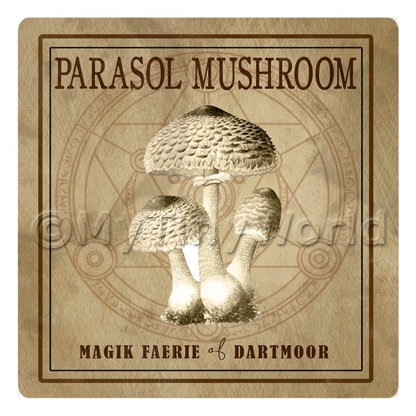 Dolls House Miniature Apothecary Parasol Mushroom Sepia Label