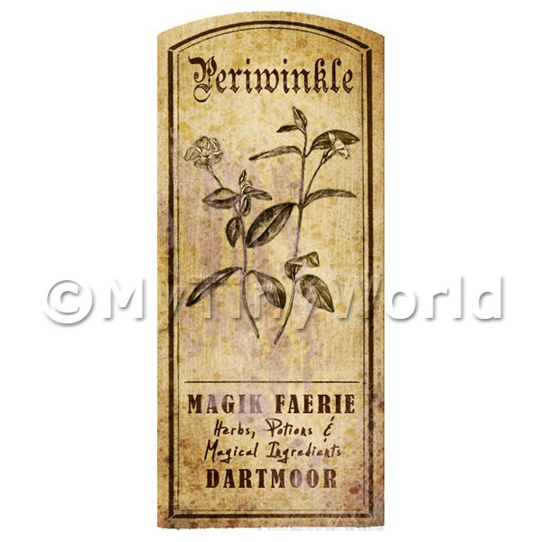 Dolls House Miniature  | Dolls House Herbalist/Apothecary Periwinkle Herb Short Sepia Label
