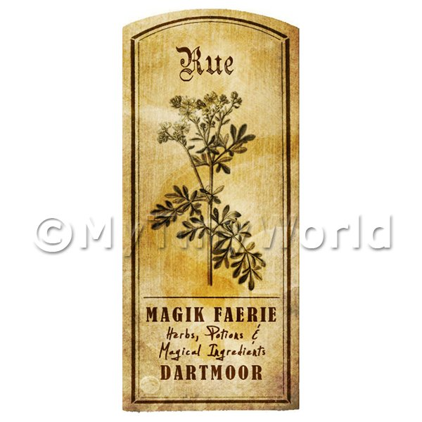 Dolls House Miniature  | Dolls House Herbalist/Apothecary Rue Herb Short Sepia Label