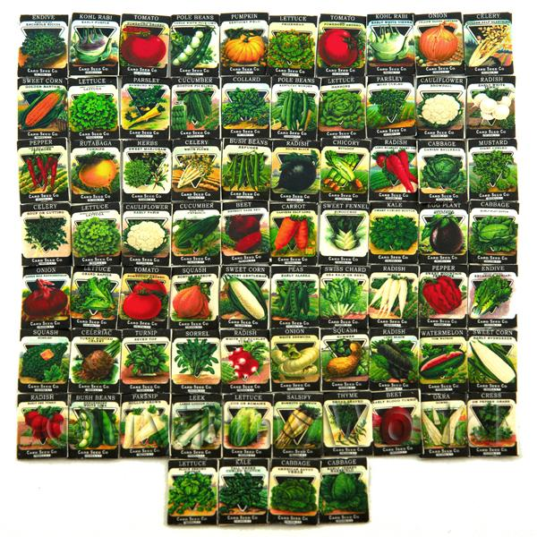Set of 74 Dolls House Miniature Seed Packets (SPMS)