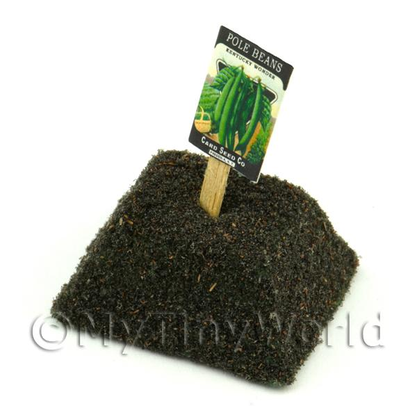 Dolls House Miniature Kentucky Beans Seed Packet With A Stick