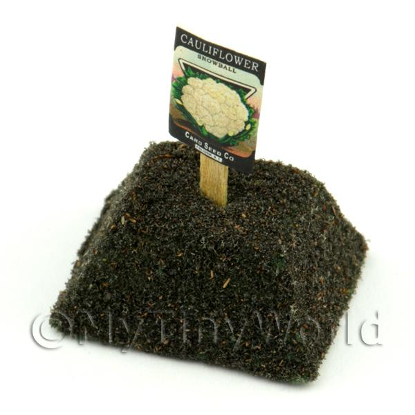 Dolls House Miniature Snowball Cauliflower Seed Packet With A Stick