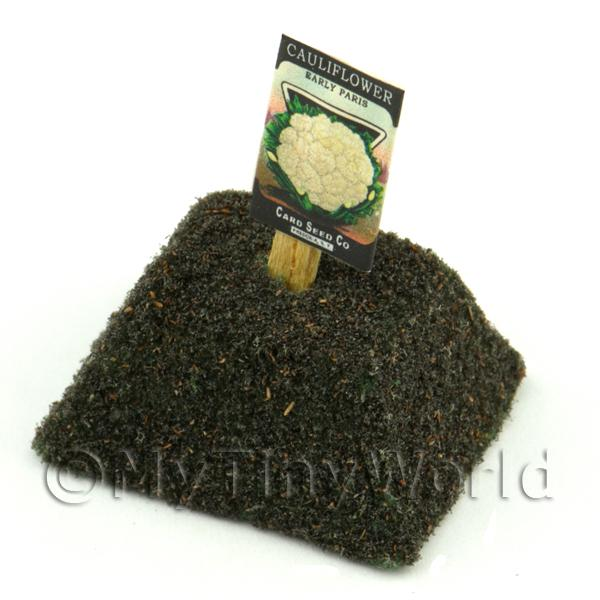 Dolls House Miniature  | Dolls House Miniature Paris Cauliflower Seed Packet With A Stick
