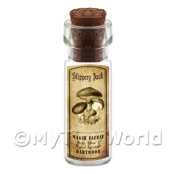 Dolls House Miniature  | Dolls House Miniature Apothecary Slippery Jack Fungi Bottle And Label
