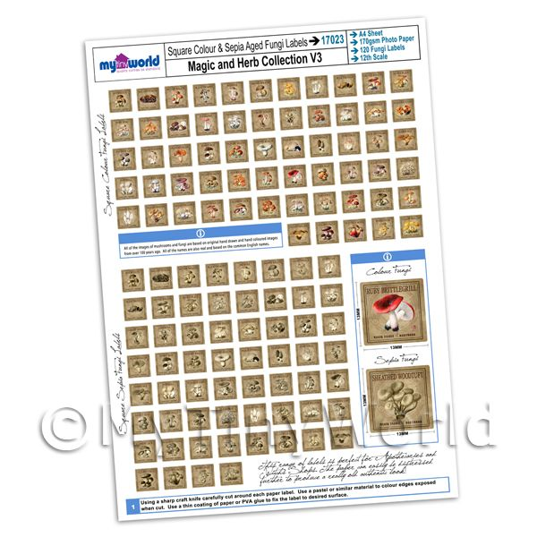 Dolls House Full Set of 120 Square Fungi / Mushroom Labels A4 Value Sheet